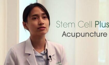 Stem-cell-Plus+