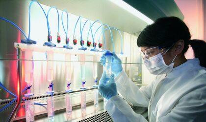 pessoas trabalhando no laboratório